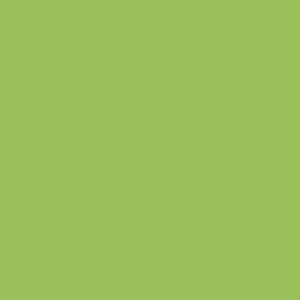 Žalia blizgi